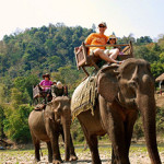 Elephant ride Laos