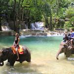 Luang Phrabang Family